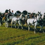 Pferde_und_kutsche